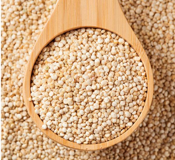 Recetas de Quinoa - Compra Thermomix® y cocina fácil los superalimentos.